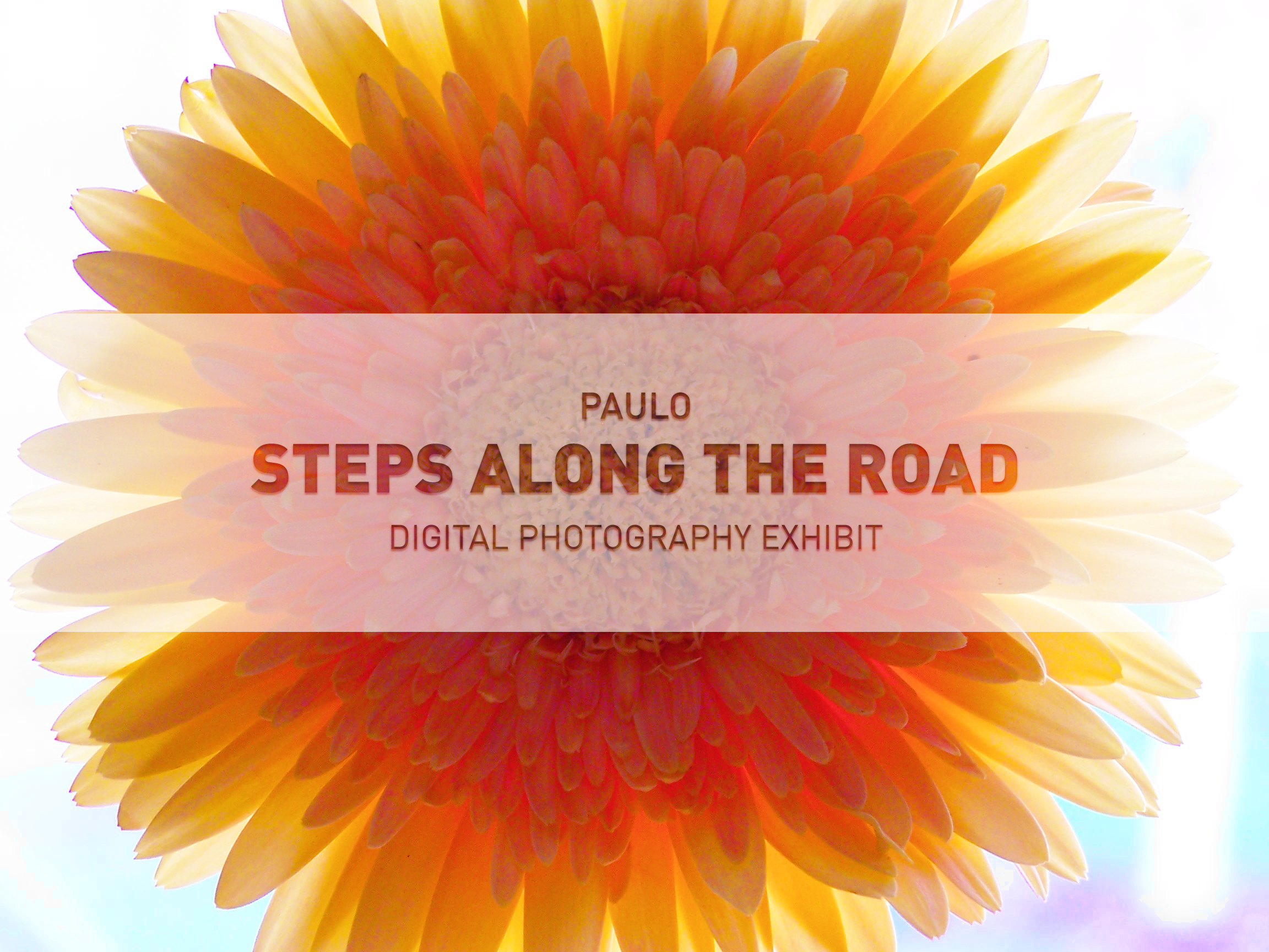 Brockton Presents: PAULO - Steps Along the Road
